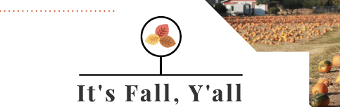 It's Fall Ya'll